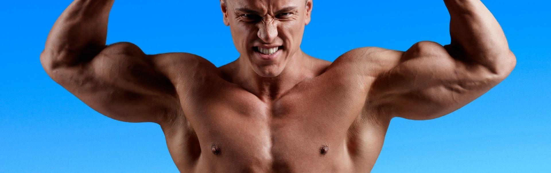 Muscular Show